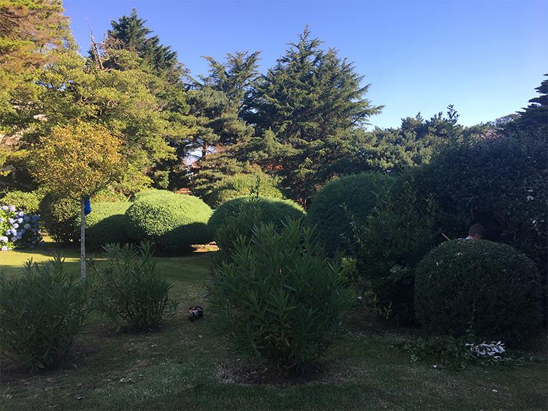 Am nagement paysager dans le pays basque culture jardin for Entretien jardin 64